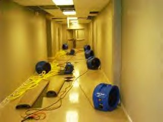 BUILDING FLOOD WATER DAMAGE CLEANING SERVICE