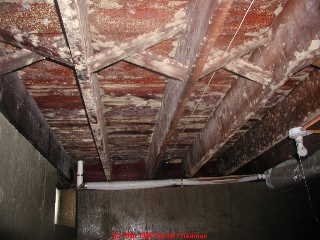 MOLD DAMAGE CLEANING SERVICE
