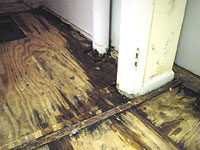 HARDWOOD FLOOR FLOOD DAMAGE CLEANING SERVICE
