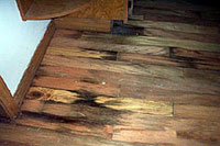 HARDWOOD FLOOR WATER DAMAGE CLEANING SERVICE